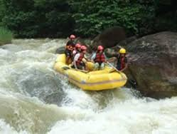 Water Rafting and Elephants