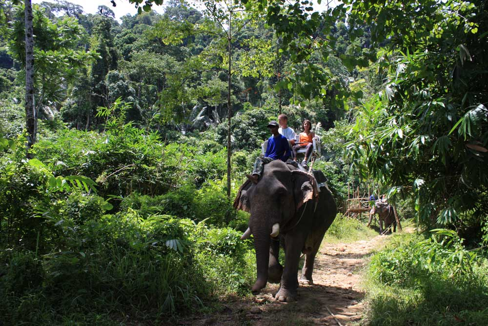 Elefantenreiten und Baden Ausflug in Khao Lak